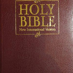 Biblia anglická NIV