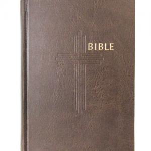 Biblia – česká – ekumenická bez DT – stredná