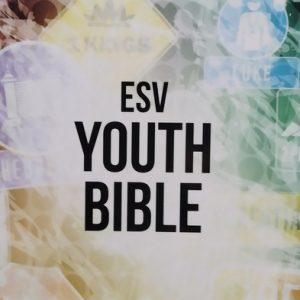Biblia anglická ESV